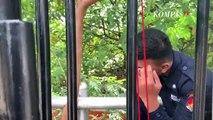 Mal Taman Anggrek dan Mal Cipinang Indah Kapan Bukanya Yah?