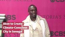 Akon Is Changing Senegal