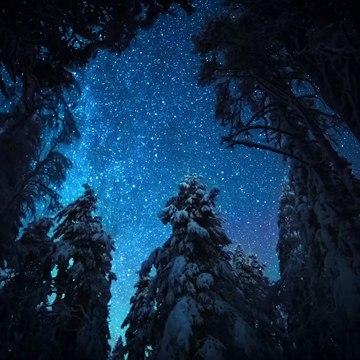 Luonto ei nuku