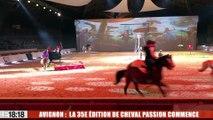 Avignon : la 35e édition de Cheval Passion commence