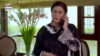 Thora Sa Haq Episode 13 _ 15th January 2020 _ ARY Digital Drama