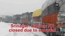 Srinagar-Jammu NH closed due to snowfall