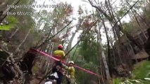 Secret mission saves Australia's 'dinosaur trees' from bushfires