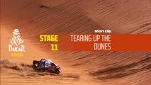 Dakar 2020 - Étape 11 / Stage 11 - Tearing up the dunes