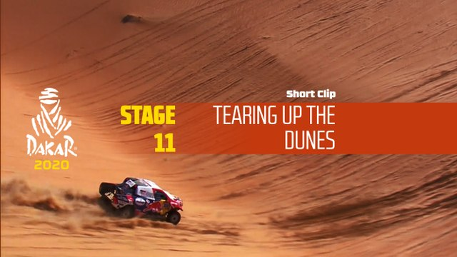 Dakar 2020 - Étape 11 / Stage 11 - Tearing up the dunes