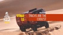 Dakar 2020 - Étape 11 / Stage 11 - Cool truck
