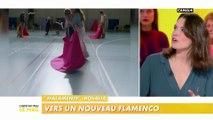 Le Festival Flamenco Théatre Nimes : un Flamenco revisité ?