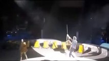 Ce castor réserve une vilaine surprise aux spectateurs d'un cirque !