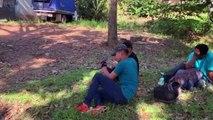 Migrantes hondureños llegan a Guatemala en su camino hacia EEUU