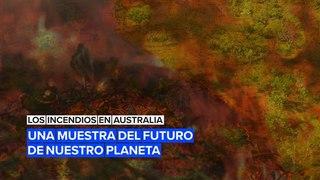 Los incendios de Australia: Una muestra del futuro de nuestro planeta