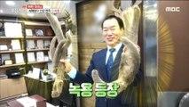 [TASTY] deer antlers, 생방송오늘저녁 20200110