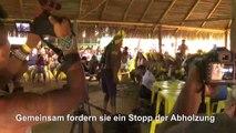 Brasiliens Ureinwohner verbünden sich gegen Bolsonaro