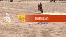 Dakar 2020 - Étape 12 (Haradh / Qiddiya) - Résumé Moto/Quad