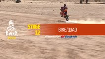 Dakar 2020 - Stage 12 (Haradh / Qiddiya) - Bike/Quad Summary