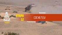 Dakar 2020 - Etapa 12 (Haradh / Qiddiya) - Resumen Coche/SSV
