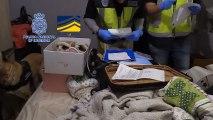 La Policía Nacional destapa una red ilegal dedicada a amañar parejas de hecho en Sagunto.