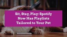 Sit, Stay, Play: Spotify Now Has Playlists Tailored to Your Pet