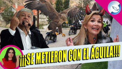 Bolivia Ataca Nuevamente a La Embajada De México Con Halcones; Quieren Ir Por AMLO