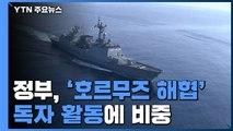 정부, '호르무즈 해협' 독자 활동에 비중...'한미동맹' 고려 / YTN