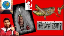 अजब गजब top mysterious and unknown amazing facts in hindi. the only facts in hindi