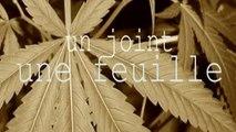 #Unjointunefeuille #Rachiday - Poucave