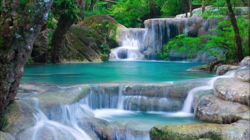 Fioravanti - I suoni della natura per il benessere e il rilassamento profondo