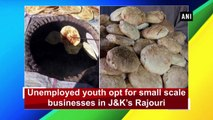 Unemployed youth opt for small scale businesses in J&K's Rajouri