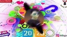 Cute Munda -- Odia Dj --Human Sagar - Ira Mohanty -- New year High Punch Dj --Mix Deej Deep -Ekadal
