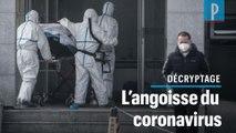 Coronavirus : un mystérieux virus né sur un marché inquiète la Chine