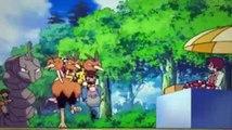 Pokemon Season 11 Episode 39 One Team, Two Team, Red Team, Blue Team