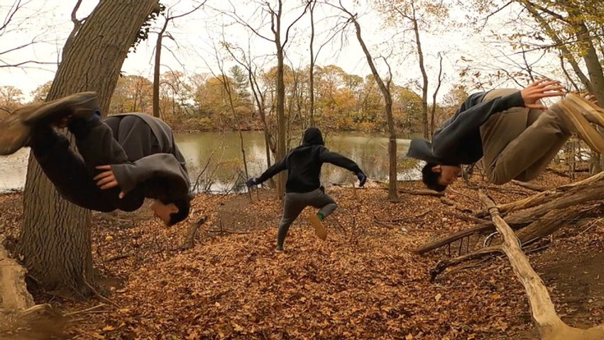 This Epic Leaf Pile Was Made For Trickshots