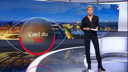 Pontfaverger-Moronvilliers : un village à l'assaut du secret d'État - JT 20h France2 - 20 janvier 2020