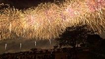Des feux d'artifice silencieux pour le bien-être des animaux en Italie !