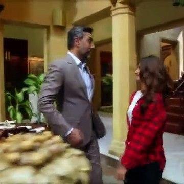 Ye Dil Mera Episode 13 HUM TV Drama - 22nd January 2020