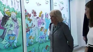 Camilla unveils stained glass windows at children's hospital