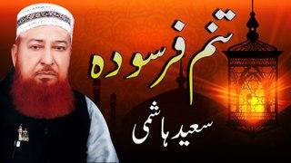Saeed Hashmi New Kalaam - Tanam Farsoda - New Naat, Humd, Kalaam 1441/2020