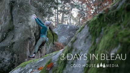 3 Foggy Days in Fontainebleau || Cold House Media Vlog 102