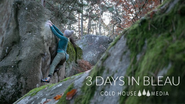 3 Foggy Days in Fontainebleau    Cold House Media Vlog 102