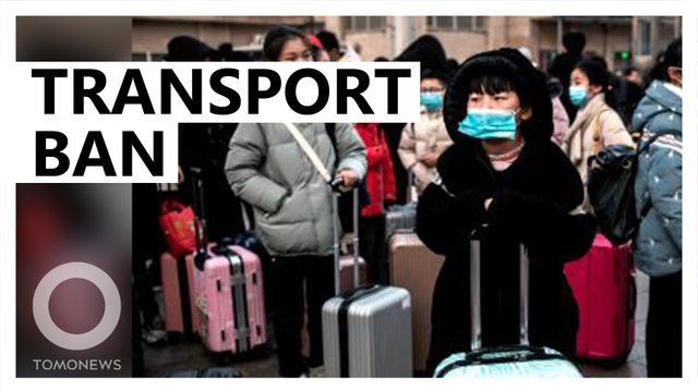 Wuhan suspends public transport amid virus outbreak