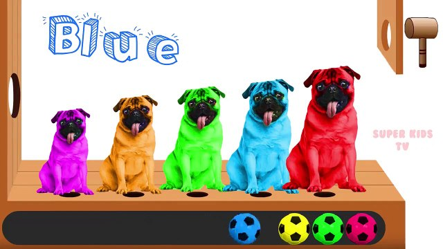 Learn colors with Colorful Dogs Funny Cartoons Soccer Ball Finger Family Nursery Rhymes for Children