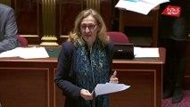 Jurisprudence sur la GPA : «le gouvernement ne peut pas se résoudre à ce nouvel état du droit» (Belloubet)