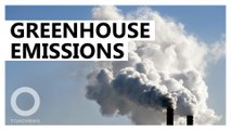 Rise in greenhouse gas emissions linked to China, India: Study
