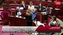 PMA : le Sénat débat de la filiation - Les matins du Sénat (24/01/2020)