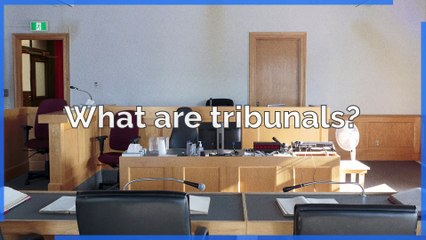 What is a tribunal?