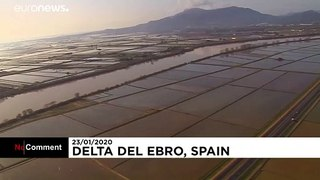Death toll rises after Storm Gloria batters Catalonia's coast