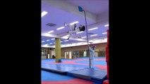 Regardez à quelle hauteur saute ce jeune champion de taekwondo