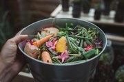 Vos Questions Jardin: Faire du compost sans jardin