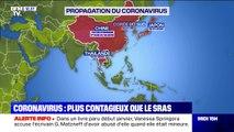 Comment s'est propagé le coronavirus, désormais plus contagieux que le SRAS ?