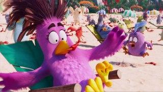 Angry Birds : Copains comme cochons - Vidéo à la Demande d'Orange
