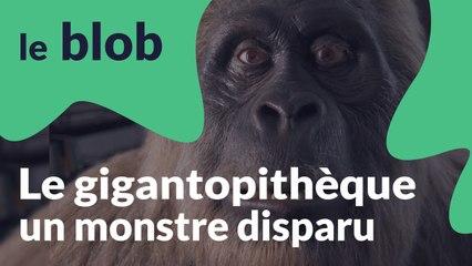 Le gigantopithèque | Monstres disparus
